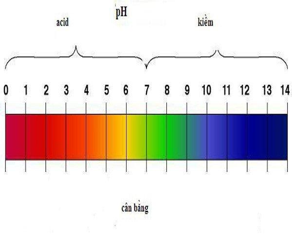 Cách cân bằng da
